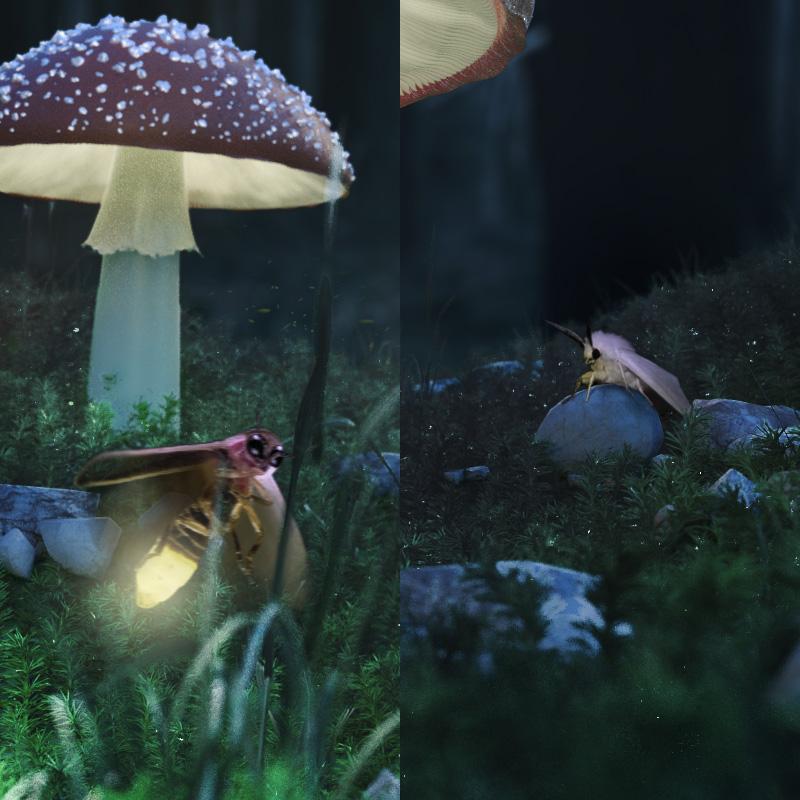 mushroom_detail